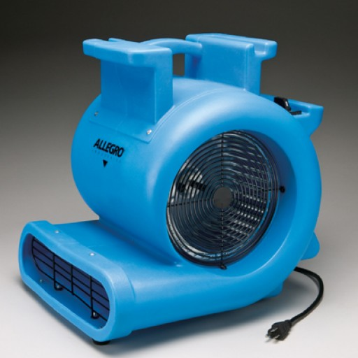 Maintain a clean and dry carpets all day long with our wide range of dryers and blowers. Buy them now and save up to 35% today!